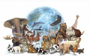 Hayvan Hakları Evrensel