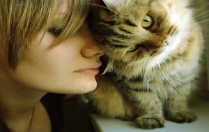 Kediler KadınLar